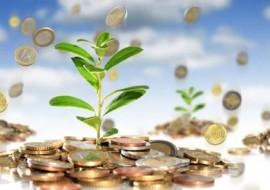 Что лучше делать, когда необходимо срочно занять деньги